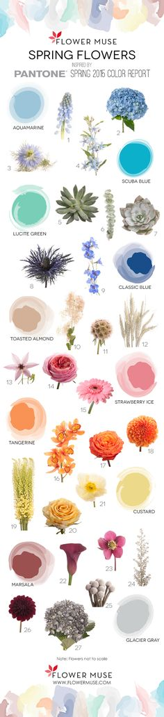 We share our picks of flowers as inspired by Pantone& Spring 2015 Color Report. Get ideas for your wedding or event with some spring flowers inspiration! Spring Wedding Flowers, Floral Wedding, Wedding Colors, Wedding Bouquets, Trendy Wedding, Elegant Wedding, Colorful Flowers, Beautiful Flowers, Flower Chart