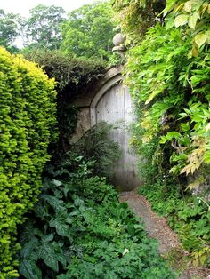 Hidden Gate, Castle Combe, England  2011 / by Marny Perry