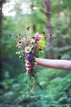 Wild flowers would suit me just fine.