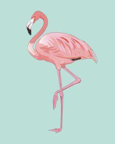 Flamingo, Pink Flamingo, Aqua Art Print