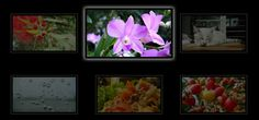 10 Pure CSS3 Image Galleries and Sliders