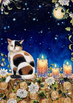 Sometimes we need to visit with an animal, gaze at the moon and stars, or light candles in the window to remind us that life is beautiful and fleeting...and how we experience it, is totally up to us. Window Candles, Art Oil, Oil Paintings, Life Is Beautiful, Moon, Fine Art, Stars, Animals, The Moon