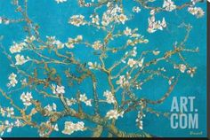 Almond Branches in Bloom, San Remy, c.1890 Stretched Canvas Print by Vincent van Gogh at Art.com