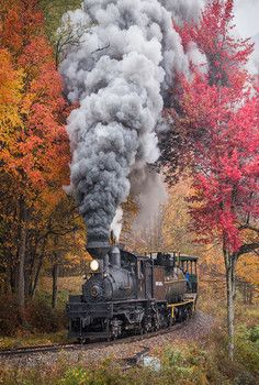 and trains! Train Tracks, Train Rides, Motor A Vapor, Old Steam Train, Abandoned Train, Old Trains, Train Pictures, Autumn Scenery, Train Engines