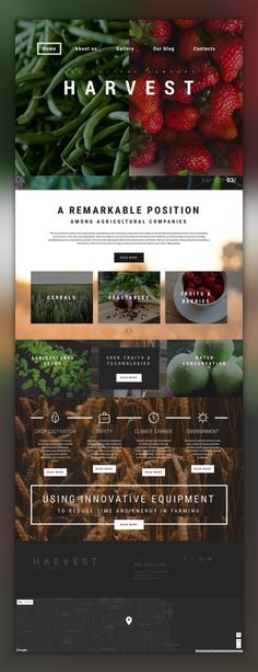 Make your site look professional and trustworthy by means of this Agriculture WP Theme. Website Layout, Website Themes, Web Layout, Corporate Design, Email Template Design, Website Design Inspiration, Blog Design, Web Themes, Wordpress Website Design
