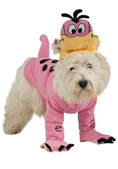 DINO PET COSTUME - He'll jump on you, knock you down and slobber all over your face the second you come home to your cave, but that's what you get yourself into when you have a snorkasaurus for a pet.  #dogshalloweencostumes