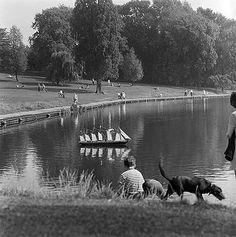 Highgate Ponds, Hampstead Heath, Hampstead, Greater London Hampstead Ponds, Hampstead Heath, London History, British History, North London, Old London, Junction Road, London Places, Fotografia