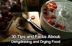 30 Tips and Facts About Dehydrating and Drying Food. Food dehydration and drying has been around for centuries. Its cheap and works great