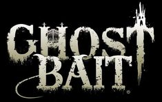 Get our take on the new paranormal investigation show, Ghost Bait. Investigators use fear to overcome malevolent entities. Scary Stories, Ghost Stories, Ghost Box, Ghost Shows, Scary Ghost Pictures, Paranormal Experience, Scary Tales, Real Haunted Houses, Band Ghost