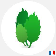 E-liquide menthol français : 10 ml - nicotine : 0, 6, 11 ou 18 mg. 4,90 €.