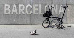 Znalezione obrazy dla zapytania barcelona bike