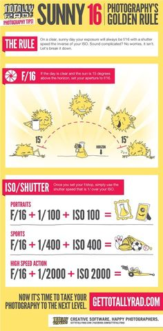 Photography On a Sunny Day {Cheat Sheet} - Best Cheat Sheets