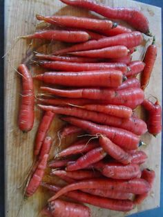 Heirloom Garden vegetable seed Non-GMO seeds bank survival organic plant Carrot Seeds, Growing Vegetables, Organic, Red, Gardening, Canning, Ebay, Lawn And Garden, Home Canning