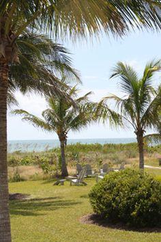 sanibel i                             sland trees & beach                 sanibel island... it just makes me smile