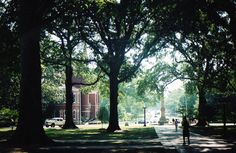 In the Circle.  Ole Miss.
