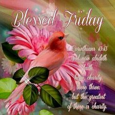 10 of the top friday blessings, friday greetings and good morning friday quotes. Happy Friday Morning, Friday Morning Quotes, Morning Greetings Quotes, Its Friday Quotes, Good Friday, Monday Blessings, Morning Blessings, Work For The Lord, Blessed Friday