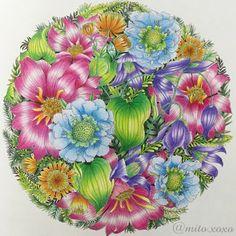 No.76✧‧˚(2016.08.15) * 世界一美しい花のぬり絵BOOK * お盆休み なかなか塗り絵の時間もなくて 1週間かかりましたが完成♡ * 実は、お花が苦手で でも頑張ってみたくて かなーり前に購入していた この素敵な塗り絵本(♡´艸`) * 途中から光の当たり具合とか 瞼重すぎてよく分からなくなり 気付いたらハミ出してるわ 筆圧強くて修正効かんわで 完成まで強行突破致しました( ´・∀・` )チーン * 写真は自分の太股を本立てにして(笑) またまた斜めで撮影しました\( ˙▿˙ )/ * プリズマカラーのみ使用♡ * #世界一美しい花のぬり絵book  #レイラデュリー  #コロリアージュ  #大人のぬり絵  #coloriages  #adultcoloringbook  #coloringbook  #floribunda  #leiladuly  #prismacolor  #プリズマカラー