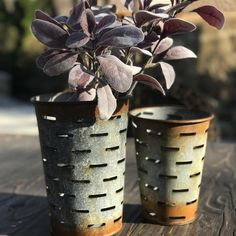 These olive style buckets are great for decorating! Add some flower stems, use the for kitchen utensils or store your paint brushes for your craft room! SOLD AS