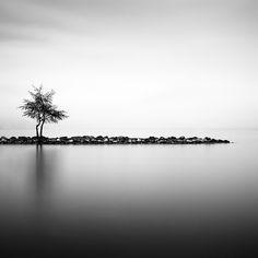 by Olivier Robert.