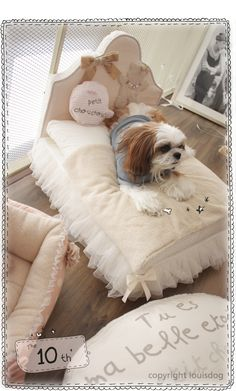 I know thats for dogs and i shouldnt be excited if i got that for my shih tzu, but seriously, i really want to get that for my dog! Cute Dog Beds, Diy Dog Bed, Cute Dogs, Doggie Beds, Bed For Dogs, Dog Bedroom, Fancy Bedroom, Luxury Pet Beds, Dog Furniture