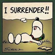 Image result for surrender