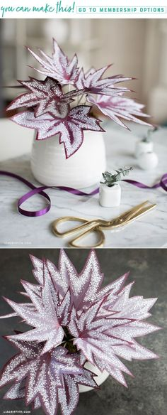 Make a simple DIY paper begonia plant for your home - Lia Griffith - www.liagriffith.com #paper #paperart #paperlove #diyhome #diyhomedecor #diyinspiration #diyidea #diyideas #diyproject #diyprojects #madewithlia