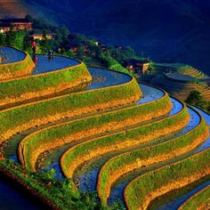 Terraced Fields, China. The green/gold offset by brilliant blue makes a striking pattern.