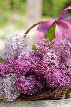 White, pale-lavender, and deep-violet lilacs are arranged in a silver tureen. (via Architectural Digest) I can almost smell them.