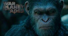 War for the Planet of the Apes  ya ha estrenado su tráiler, donde podemos ver a lo largo de sus dos minutos las primeras secuencias de esta...