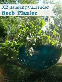 How to Make Hanging Cullender Herb Planter - Use this tutorial to create an easy planter using a colander.