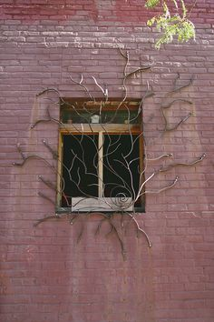 uniquely shaped, tree like wrought iron gates, covering the windows of the Berry Street, Bembe bar and nightclub.