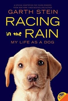 Racing in the Rain: My Life as a Dog (New Paperback Book) by Garth Stein