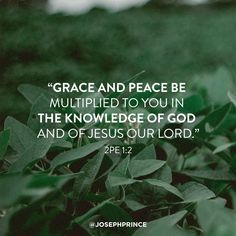 Joseph Prince, Gods Grace, My Passion, Decir No, Prayers, Knowledge, Lord, Bible, Peace