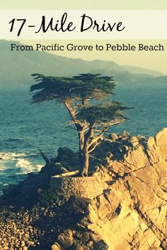 Exploring 17 mile drive: from Pacific Grove to Pebble Beach, California