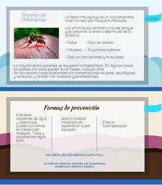 Información sobre el Chikungunya