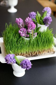 29 Fresh Wheatgrass Home Décor Ideas To Try In Spring | DigsDigs