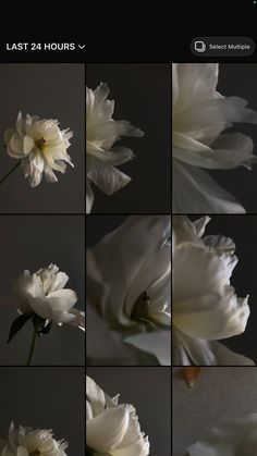 Classy Aesthetic, Night Aesthetic, Brown Aesthetic, Flower Aesthetic, Aesthetic Photo, Aesthetic Pictures, Aesthetic Iphone Wallpaper, Aesthetic Wallpapers, Cute Patterns Wallpaper