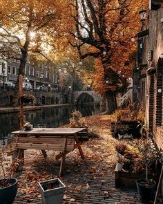 Best Places In Europe, Best Cities, Places To Go, Autumn Morning, Autumn Cozy, Autumn Aesthetic, City Aesthetic, Fall Pictures, Great Pictures