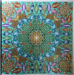56 Best Lost Ocean Page 4 Square Turtle Mandala Images On Pinterest