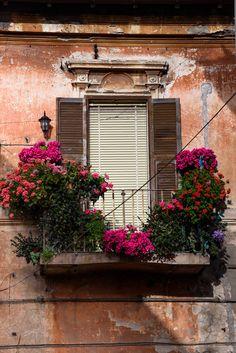 Tarquinia Italian balcony in Lazio Porch Windows, Balcony Doors, Old Windows, Windows And Doors, Window Box Flowers, Balcony Flowers, Window Boxes, Small Balcony Garden, Balcony Plants