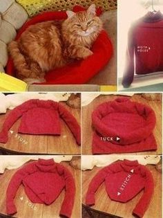 old shirt cat bed Wonderful DIY Cat Tent/Bed From Old Shirt Pet Beds, Dog Bed, Diy Old Tshirts, Diy Cat Tent, Cat Hacks, Ideal Toys, Bed Tent, Pet Furniture, Small Cat
