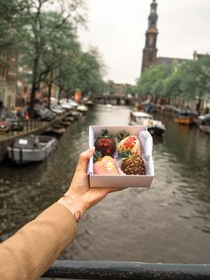 Welcome to my handy guide on places to eat in Amsterdam. Amsterdam is one of my favourite cities and I have been there many times. On this trip, I discovered some new spots for food and thought I would pop them into one handy guide. Chocolate Covered Treats, Chocolate Dipped Strawberries, Chocolate Desserts, Chocolate Art, Strawberry Cake Pops, Strawberry Recipes, Strawberry Shortcake, Food Bouquet, Food And Thought
