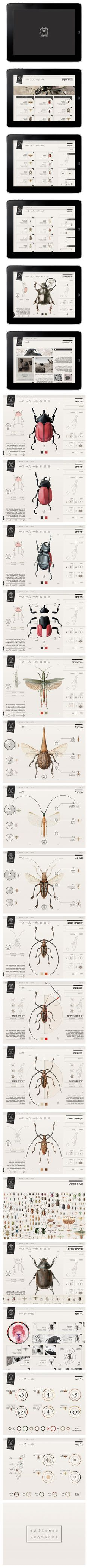 http://www.behance.net/gallery/Insect-Definer/8164527
