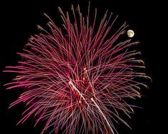 Penny Lisowski - Red Featherduster - Fireworks and Moon