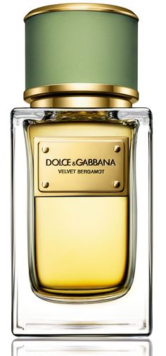 New Dolce Gabbana Beauty Velvet Ginestra Eau de Parfum. beauty makeup perfume from top store Perfume Versace, Perfume Zara, Perfume Scents, Best Perfume, New Fragrances, Perfume Bottles, Dolce And Gabbana Fragrance, Make Up, Men's Cologne