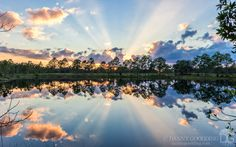 Sunset crepuscular rays in central Florida [OC] [1280x802]