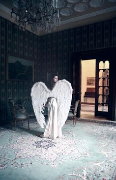 It is impossible to see the angel unless you first have a notion of it. James Hillman