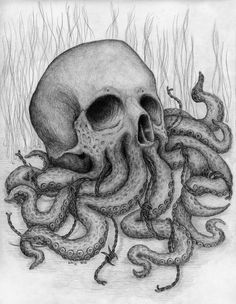 Skull octopus drawing