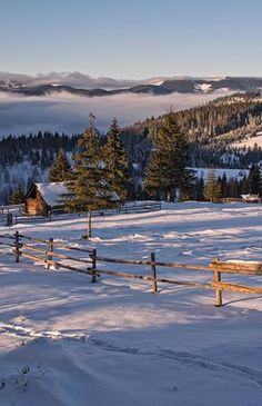 Winter in Carpathian Mountains, W Ukraine, from Iryna Beautiful Winter Pictures, Winter Photos, Ukraine, Beautiful World, Beautiful Places, Vida Natural, Carpathian Mountains, Winter Magic, Holiday Places