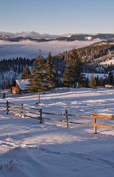 Winter in Carpathian mountings , W Ukraine, from Iryna